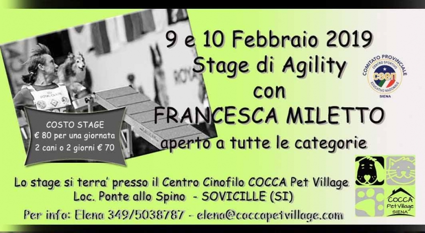 Stage  di Agility Dog con Francesca Miletto